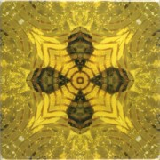 Tile_Glitz_yellowglitz3