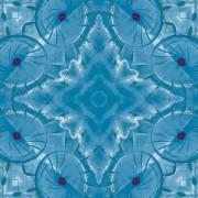 Floor_Sapphire_sapphire5