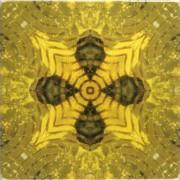 Tile_Glitz_yellowglitz3