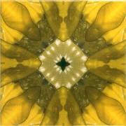 Tile_Glitz_yellowglitz8