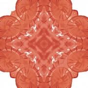 floor_Emperor_Caesar in Red